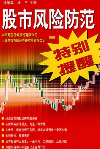 股市风险防范特别提醒PDF电子书下载沈黎风著