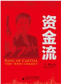 资金流PDF电子书下载 王晓著