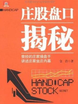 庄股盘口揭秘PDF电子书下载 金浩著