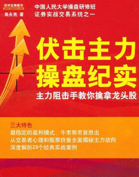 伏击主力操盘纪实PDF电子书下载高永亮著