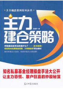 主力建仓策略PDF电子书下载 吴国平  著