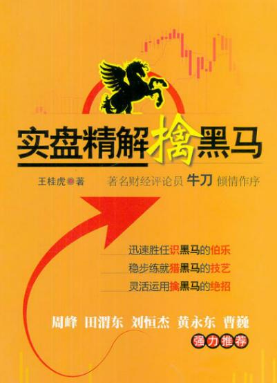 实盘精解擒黑马PDF电子书下载王桂虎著