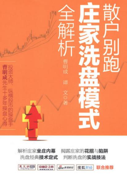 散户兵法:十种超越大盘的选股策略PDF电子书下载理查德·科克著