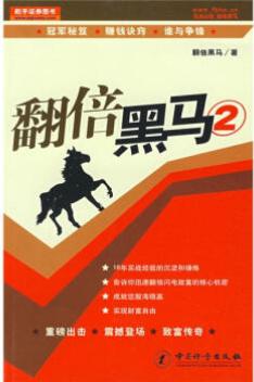 翻倍黑马2  PDF电子书下载