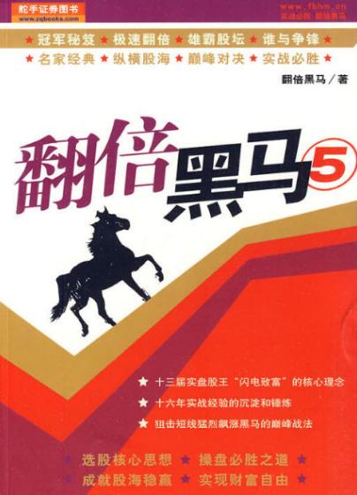 翻倍黑马5  作者 翻倍黑马 PDF电子书下载