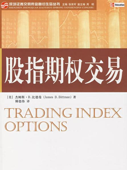 股指期权交易 PDF电子书下载 作者 杰姆斯比德曼