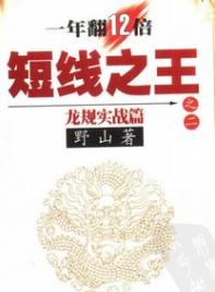 短线之王之二  龙规实战篇PDF电子书下载作者野山