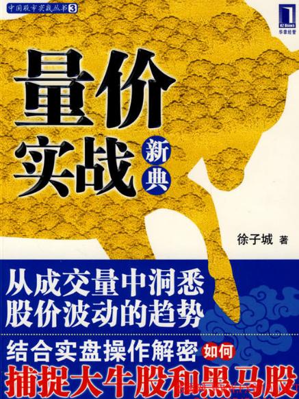 量价实战新典PDF电子书下载 作者 徐子城