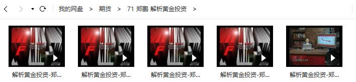 郑鹏 解析黄金投资 视频培训课程