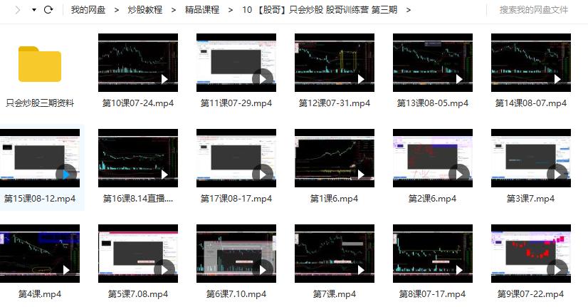【股哥】只会炒股 股哥训练营 第三3期视频教学(2019年17讲视频+5个文档)