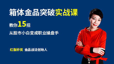 【红指妙奕】股市实战课:15天从小白到职业操盘手视频培训课程
