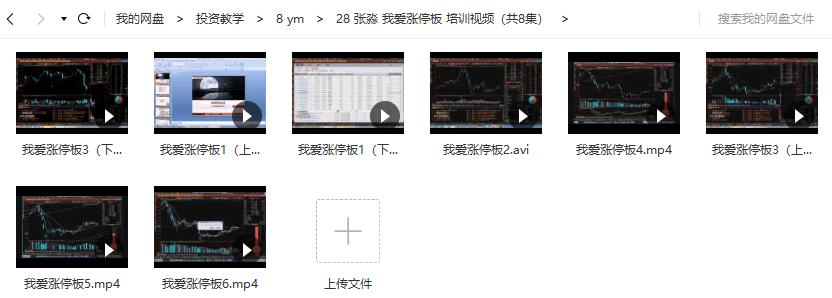 张淼 我爱涨停板 视频培训教程(共8讲)