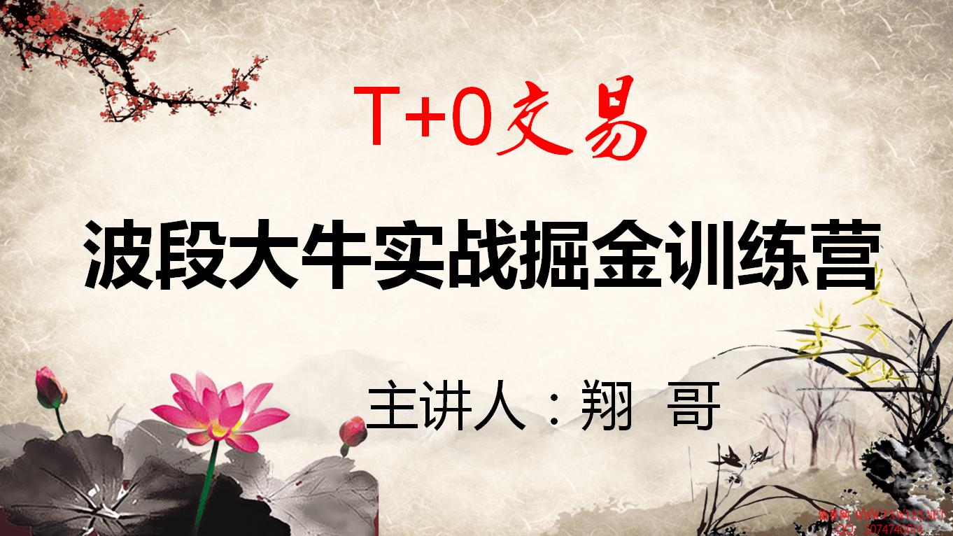 【翔哥】2020年擒龙T+0波段实战掘金训练营视频培训课程