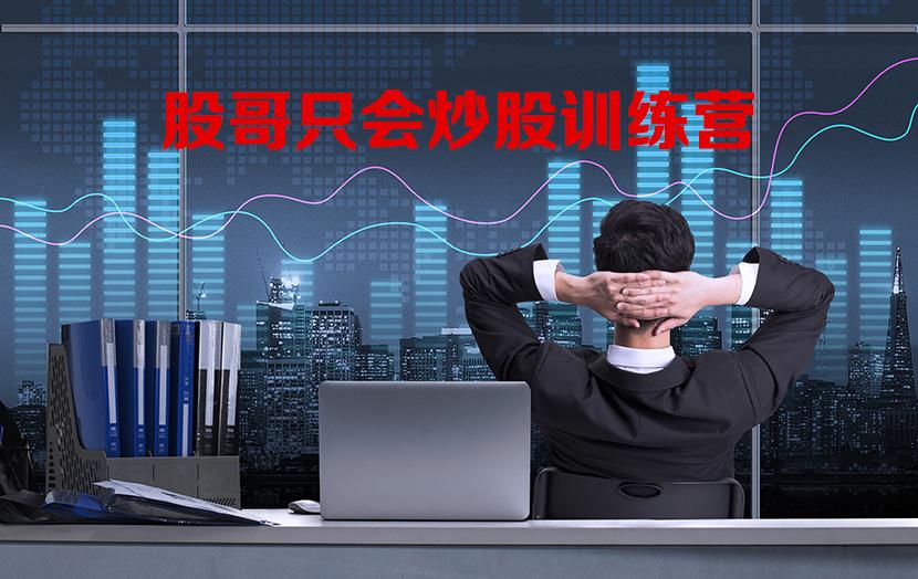 【股哥】只会炒股 股哥训练营 第八期股哥8期只会炒股训练营视频课程