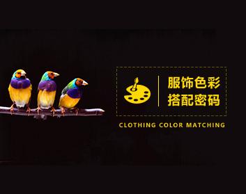 服饰色彩 怎样寻找到属于自己的色彩搭配密码?